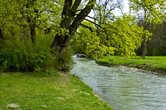 Giardino verde - fiume - sorgente Fotografie Stock