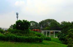 Giardino verde - parco verde nel Goudjerate - in India - in Asia fotografie stock
