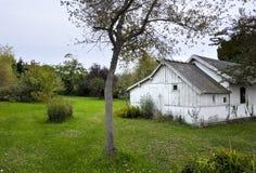 Giardino verde piacevole, cottage di legno bianco - iarda Fotografie Stock Libere da Diritti