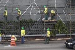 Giardino verticale Immagine Stock Libera da Diritti