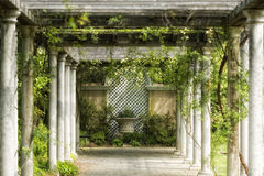 Giardino, viti, passaggio pedonale Fotografia Stock