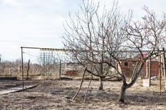 Giardino vuoto del cortile del villaggio in molla in anticipo Immagine Stock