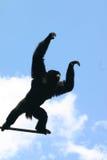 Gibbon de Siamang image libre de droits