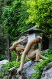 Gibbon, der auf Felsen sitzt Stockfoto