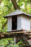 Gibbon in einem kleinen Haus, Chiangmai-Zoo, Thailand Stockfotografie