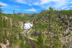 Gibbon Falls in Yellowstone Royalty Free Stock Photography