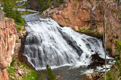 Gibbon Falls in Yellowstone Stock Photography