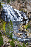 Gibbon Falls. In Yellowstone National Park stock image