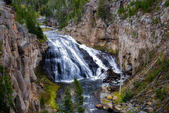 Gibbon Falls. In Yellowstone National Park royalty free stock photography