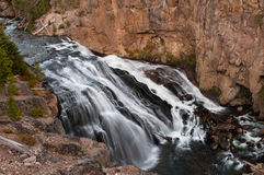 Gibbon Falls. In Yellowstone National Park, Wyoming Stock Photography
