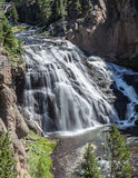 Gibbon Falls. In Yellowstone National Park in Wyoming royalty free stock images