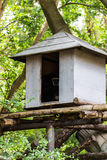 Gibbon In a small house ,  Chiangmai Zoo , Thailand Stock Photography
