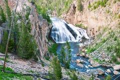 Gibbon spadki, Yellowstone park narodowy, Wyoming, usa Obrazy Stock