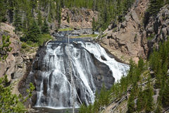 Gibbons waterfall Stock Image