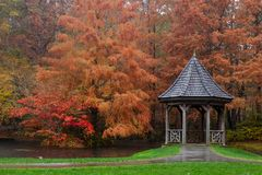 The Gibbs Garden gazebo surrounded by majestic burnt orange bald cypress trees and maples. royalty free stock photo