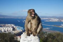 Gibraltar, pontos do interesse na área ultramarina britânica no cuspe do sul da península ibérica, Imagem de Stock