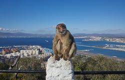 Gibraltar punkter av intresse i det brittiska utländska området på det sydligt som spottas av Iberiska halvön, Royaltyfria Bilder