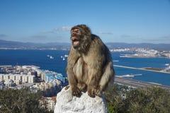 Gibraltar, puntos del interés en el área de ultramar británica en el escupitajo meridional de la península ibérica, Fotos de archivo