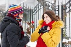 Gibt eine Rose im Winter Stockfotografie