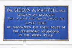 Gideon A Mantell-Plakette in Lewes Lizenzfreies Stockbild