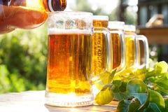 Gießen Sie Bier in einem Becher Stockfotos