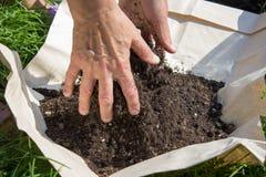 Gießen Sie den Boden mit den Händen Stockfoto