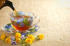 Gießen Sie den Tee in einen Becher vom Kessel Lizenzfreie Stockfotos