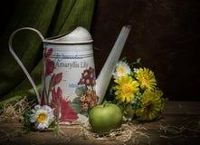 Gießkanne mit gelben Blumen und grüner Apfel auf dem dunklen Hintergrund Stockfotografie