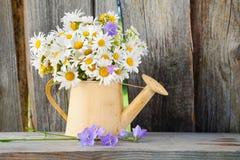 Gießkanne mit Sommergänseblümchen blüht auf hölzernem Hintergrund Lizenzfreie Stockbilder