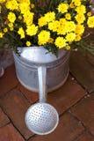 Gießkanne und gelbe Blume Lizenzfreie Stockfotografie