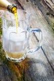 Giet bier Royalty-vrije Stock Foto's