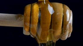 Gietende honing aan dipper stok tegen de zwarte achtergrond stock video