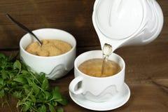 Gietende jiaogulan thee stock foto's