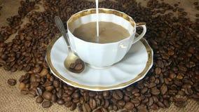 Gietende melk in de kop van verse gebrouwen koffie stock videobeelden