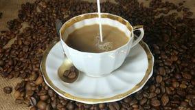 Gietende melk in de kop van verse gebrouwen koffie in langzame motie stock video