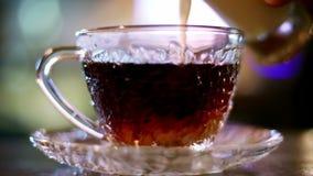 Gietende melk in hete zwarte thee, melkmorserijen stock footage