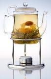Gietende thee Royalty-vrije Stock Afbeeldingen