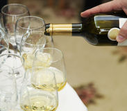 Gietende witte wijn Royalty-vrije Stock Foto