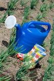 Gieter en rubberlaarzen op de plantaardige geep Stock Foto