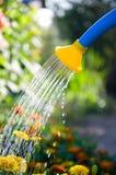 Gieter het water geven bloembedden Royalty-vrije Stock Foto