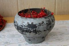Gietijzer - pot van gietijzer met viburnum royalty-vrije stock afbeelding