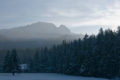 Giewont和森林在冬天。 库存图片