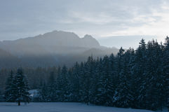 Giewont and the forest in winter. Giewont and the forest at dusk in winter Stock Image