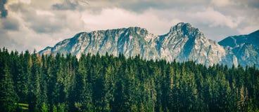 Giewont Mountain, Inspiring Mountains Landscape in summer Tatras Royalty Free Stock Photos