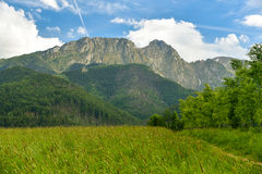 Landscape, meadow, Giewont mountain, Zakopane, Poland Royalty Free Stock Photography