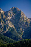 Giewont in Zakopane, Poland Royalty Free Stock Image
