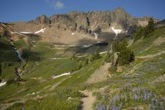 Gifford Pinchot Wilderness Royalty Free Stock Photos