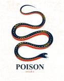 Gifslang uitstekende tatoegering, vectorembleem of embleem van agressief roofdier reptiel, dodelijk vergiftigd serpentsymbool, ui vector illustratie