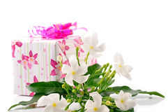 Gift. Box with romantic jasmine spa on white Royalty Free Stock Image