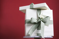 Gift. Two gift boxes Royalty Free Stock Image